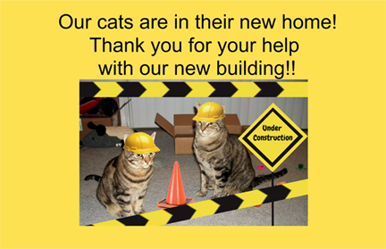 APF, a Brand of ICP Construction, Donated Products to a No-Kill Cat Shelter in Tucson, AZ